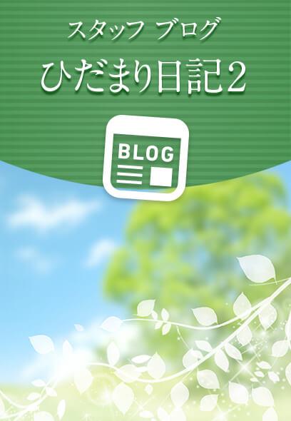 スタッフブログ ひだまり日記